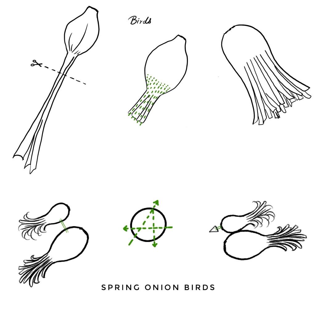 Spring onion birds