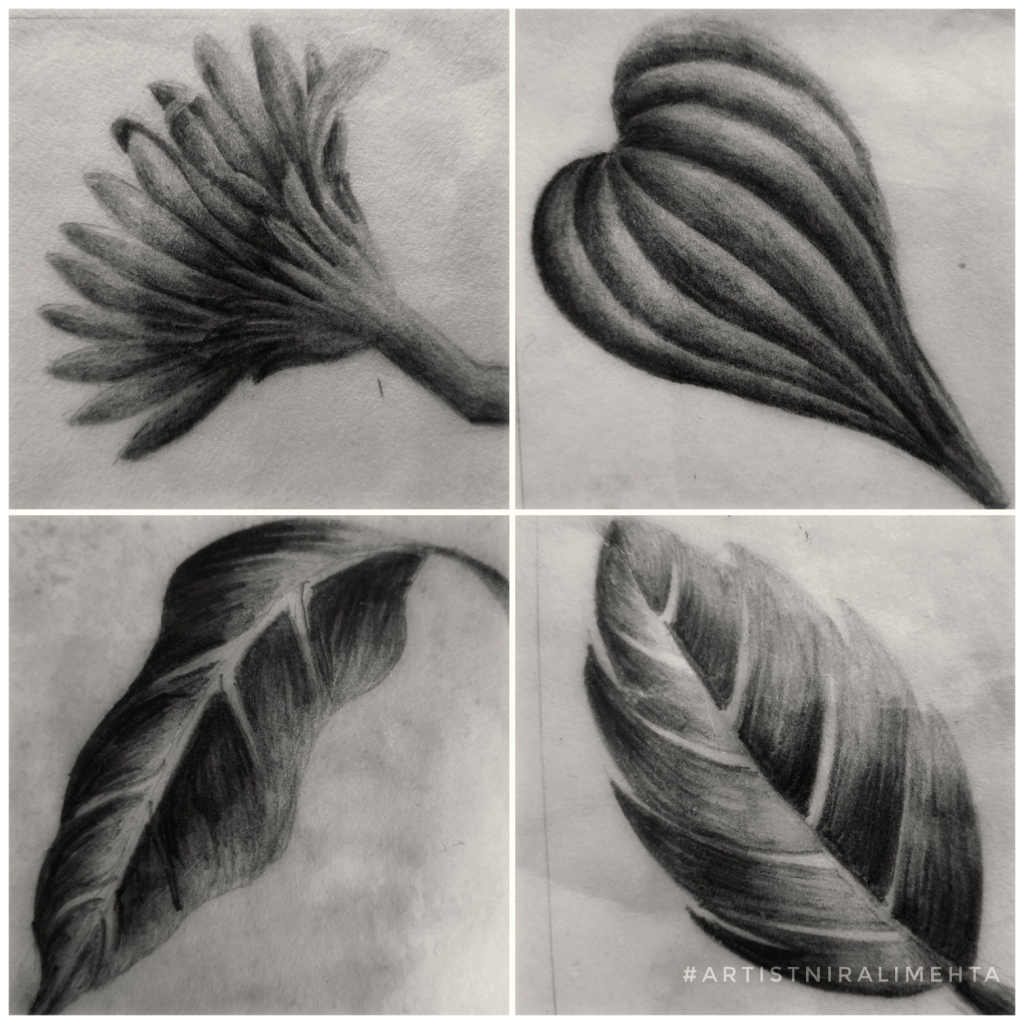 Learning  pencil shading  2